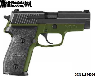 P229R-9-GSS