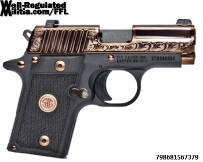 238-380-ERG