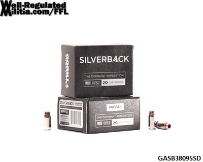 GASB38095SD