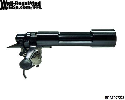 REM27553