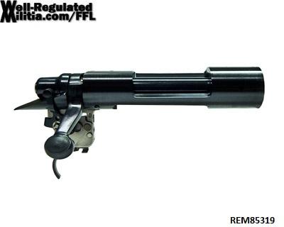 REM85319